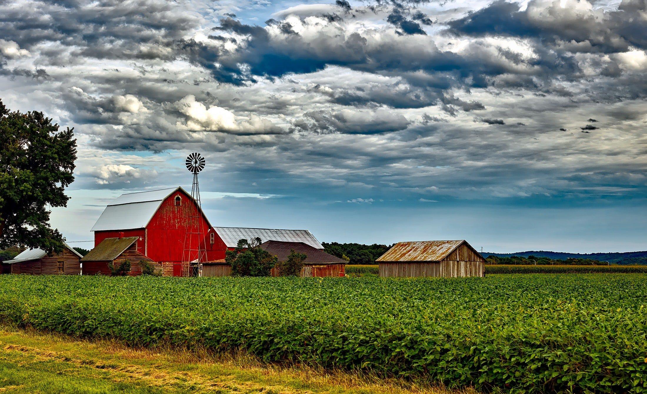 Bâtiment agricole entouré d'un champ.