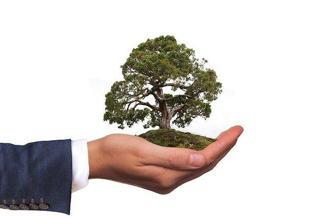 L'autorisation environnementale vient renforcer le dispositif des ICPE.